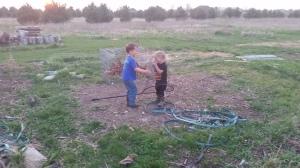 Joe catching Jake in a net