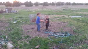 Joe catching Jake in a net