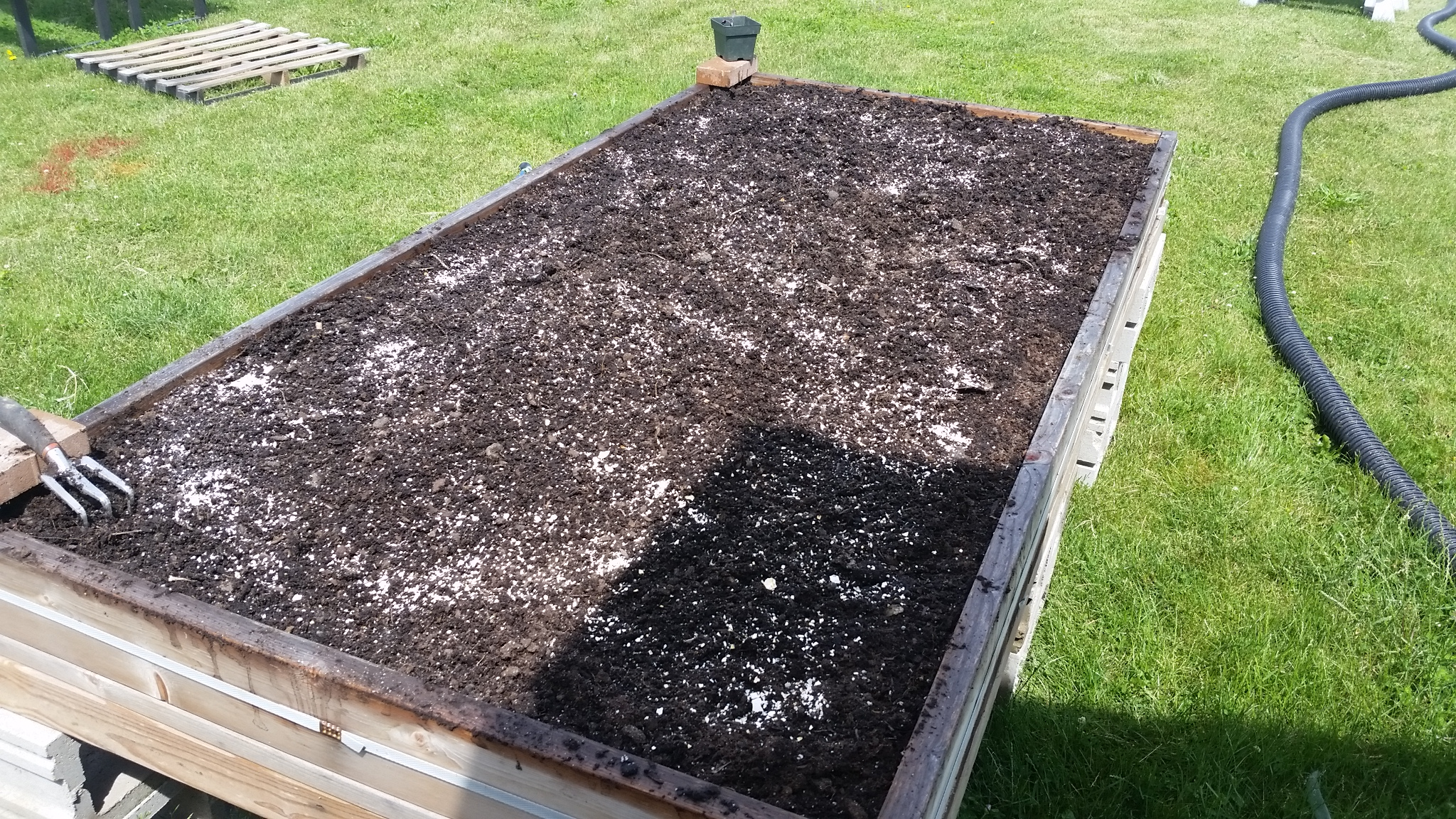 The Raised Beds A Pinch Of Homestead
